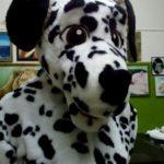 Ростовая кукла Собака Далматинец купить 25т.р.